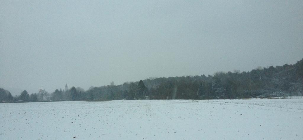 Schneetreiben auf dem Feld