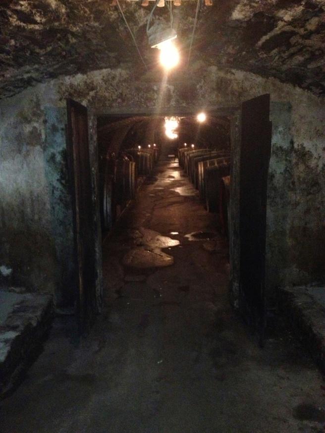 Nicht meiner - Blick in den Weinkeller bei Dagernova in Dernau an der Ahr.