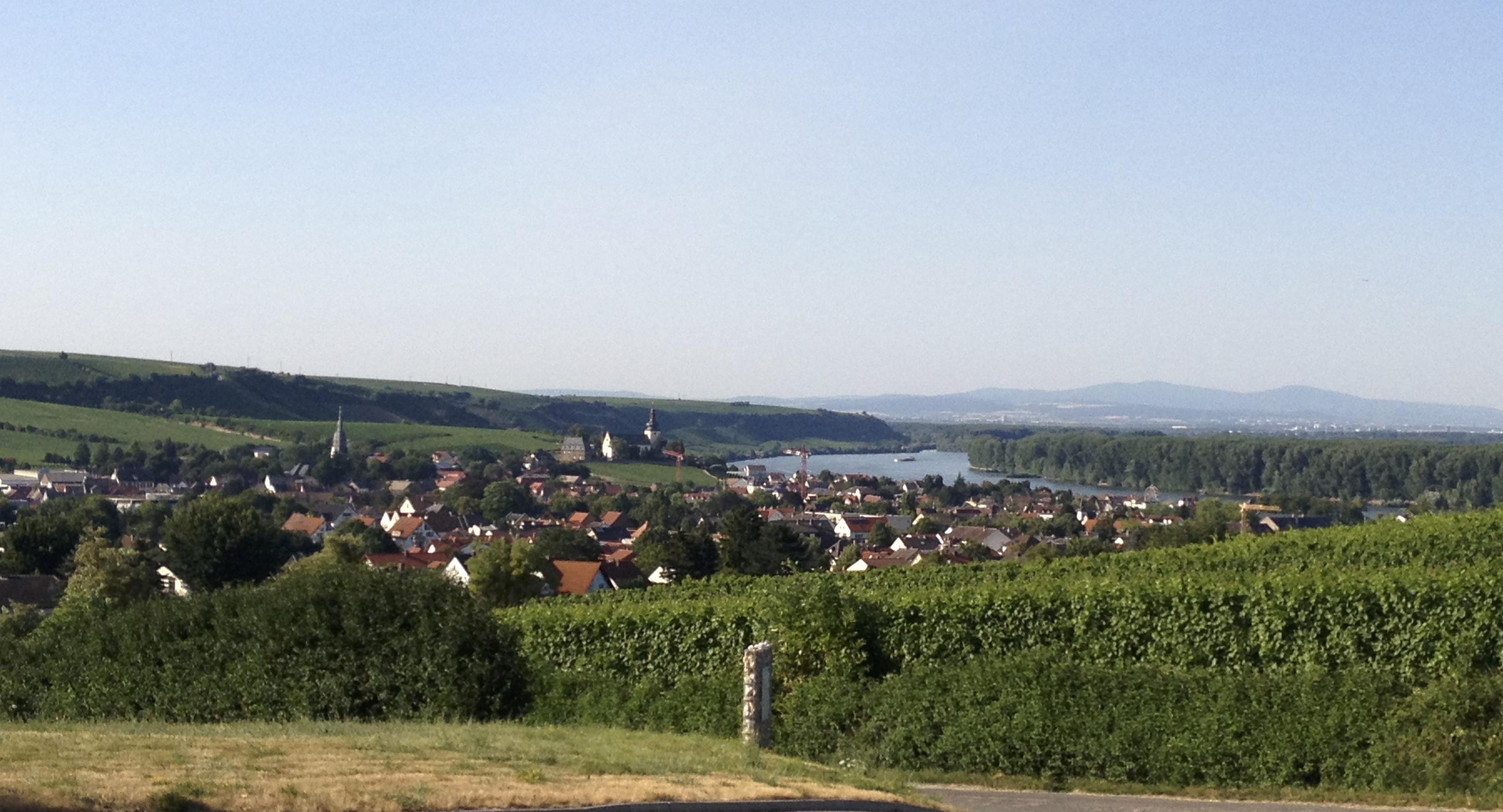 Und als Hoffnung auf den Sommer: Der Blick von den Raddecks Richtung Nord-Ost im Sommer 2013.