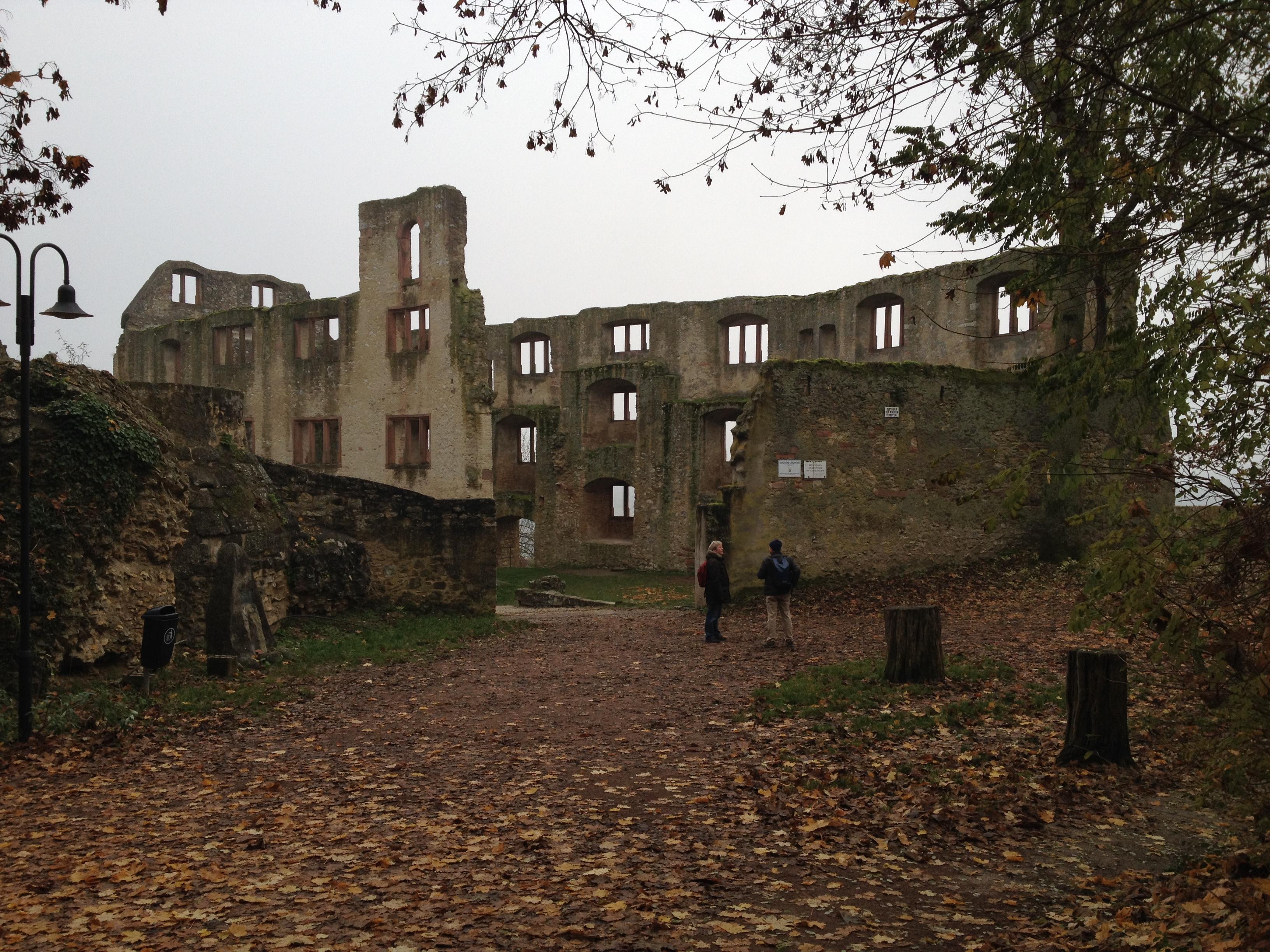 Die Burgsruine Landskron.